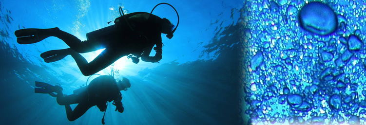 Scuba Diving in Marbella on the Costa del Sol with Escape 2 Marbella