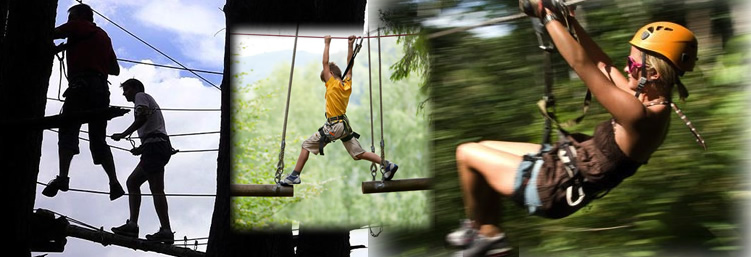 Tree Top activities in Marbella